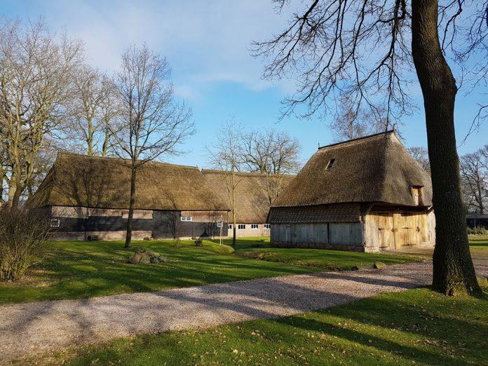 Saksische boerderijen in brinkdorp Gees